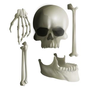 Magnesium for Bones
