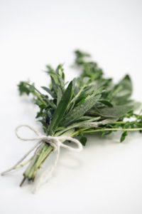 Maria Treben Best Herbs