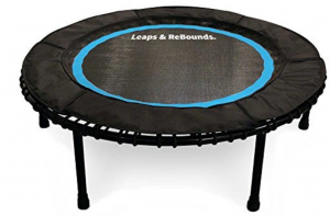 Leaps Rebounds Bungee Mini Trampoline