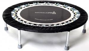 MaXimus Pro Gym Rebounder